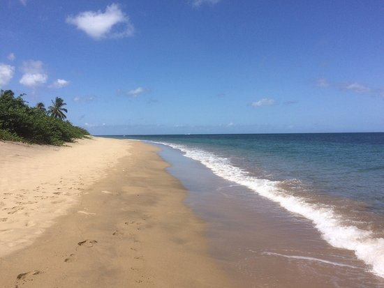 Nevis: Beautiful peaceful sandy beach