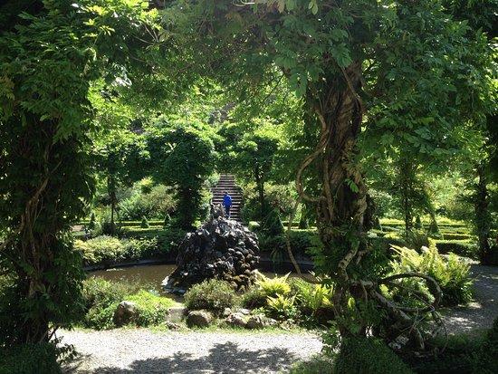 Bantry House & Garden: photo9.jpg