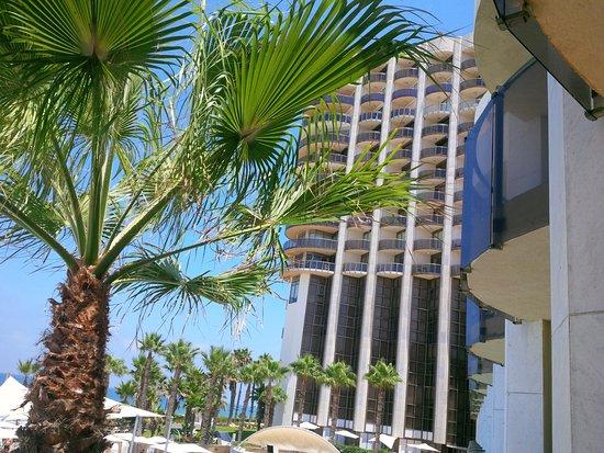 Daniel Herzliya Hotel Photo
