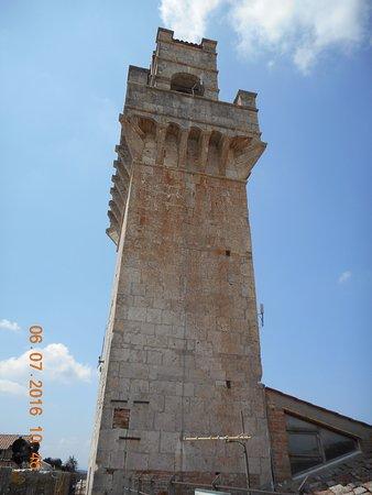 Museo Civico : Torre del palazzio civico