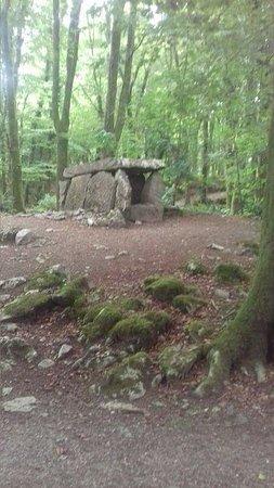 Sixmilebridge, Ireland: Dolman