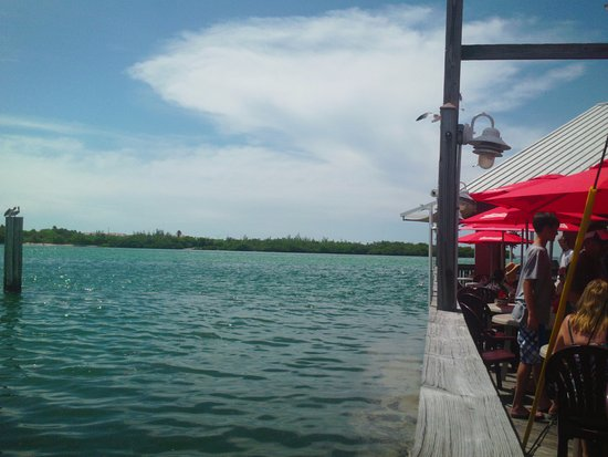 Old Salty Dog : Another view from the deck