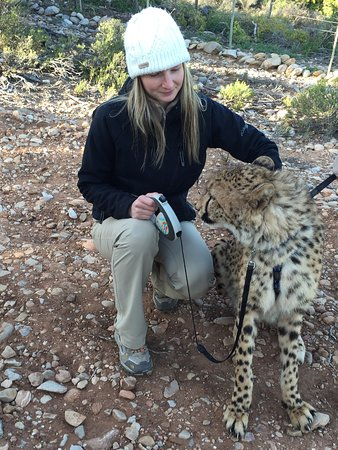 Oudtshoorn, Sør-Afrika: The Cango Wildlife Ranch is a must see place. Very cool place with great staff. Loved volunteeri