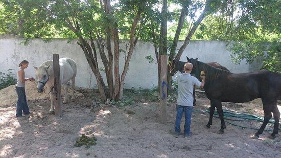 Rancho Baaxal
