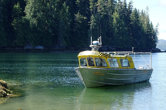 Port McNeill, Canada: Thanks for the drop off James! Have a safe trip back to Telegraph Cove.