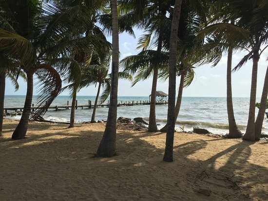 Pelican Beach - Dangriga: View from hotel