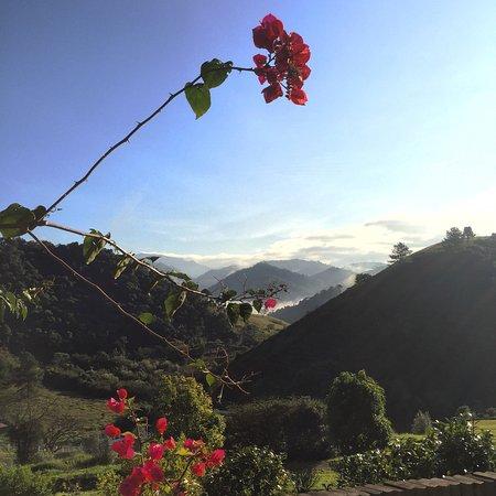 Maua Brasil: photo0.jpg