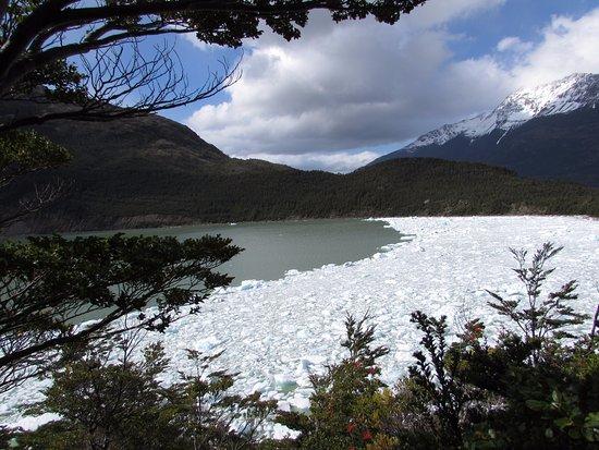 Channel of Last Hope (Ultima Esperanza): Vista da glacial