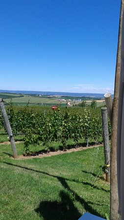Wolfville, Canadá: 20160720_114237_large.jpg