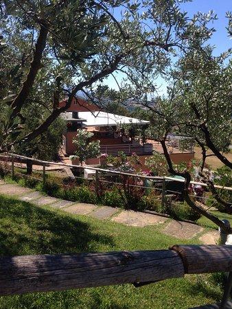Piccione, Italia: photo2.jpg