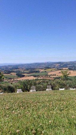 Piccione, Italia: photo4.jpg