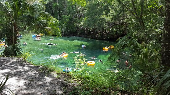Orange City, FL: Blue Springs at the head. Hole is the darker part and goes down 100+ ft.