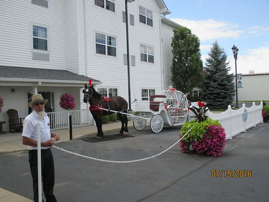 Horse Cinderella carriage rides just outside the entryway