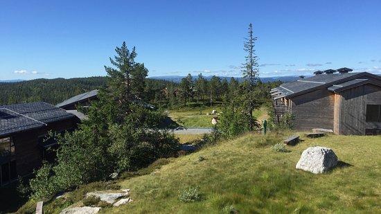 Noresund, Norvegia: photo1.jpg