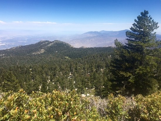 Idyllwild, CA: View on way to the peak