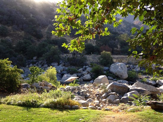 Buckeye Tree Lodge صورة