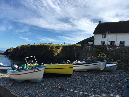Cadgwith, UK: photo0.jpg