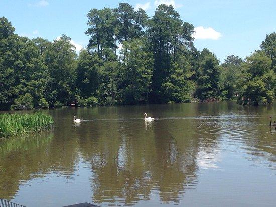 Sumter, Karolina Południowa: photo4.jpg
