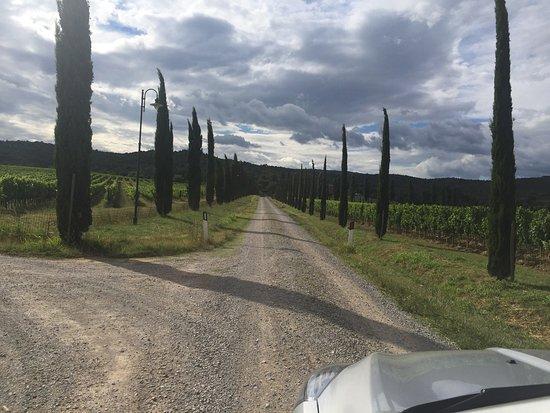 Ciggiano, Italia: I Grandi di Toscana