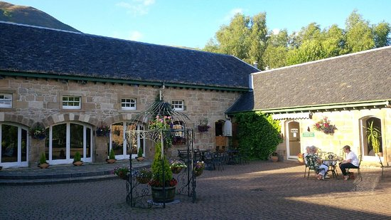 Tillicoultry, UK: Courtyard in the sunshine