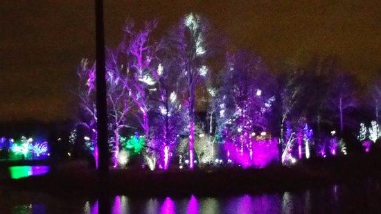 Lisle, IL: Illumination