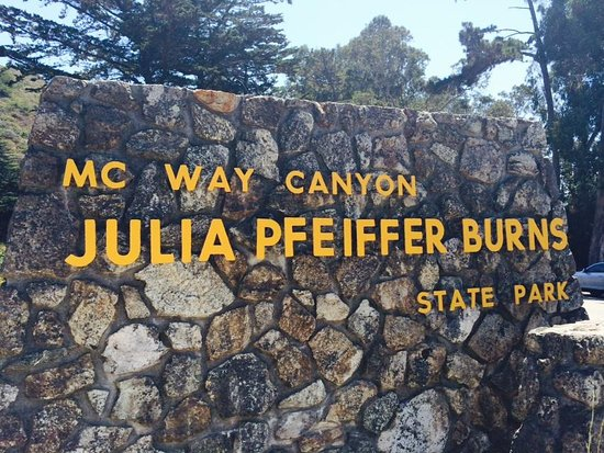 Julia Pfeiffer Burns State Park: Placa