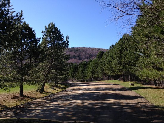 Mabou, Canadá: Entrance road to the property