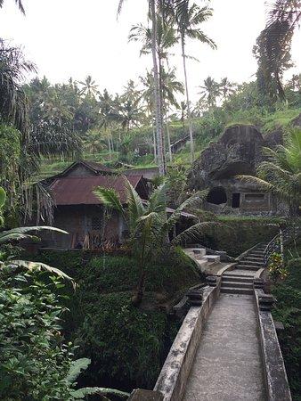Tegalalang, Indonésia: photo8.jpg