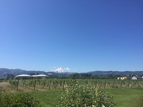 Hood River, OR: photo8.jpg