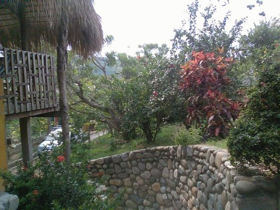 Villa Escondida: beautiful pebble rock pathways line with lime trees.bananas,mangoes,coconut and a lot others.