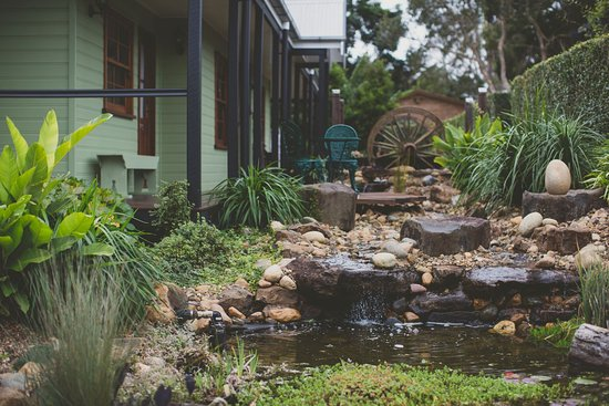 Flaxton, Australia: Water feature