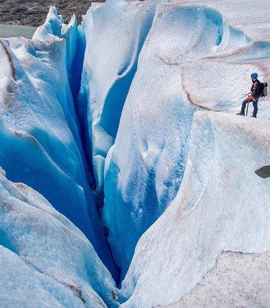Above & Beyond Alaska: photo0.jpg