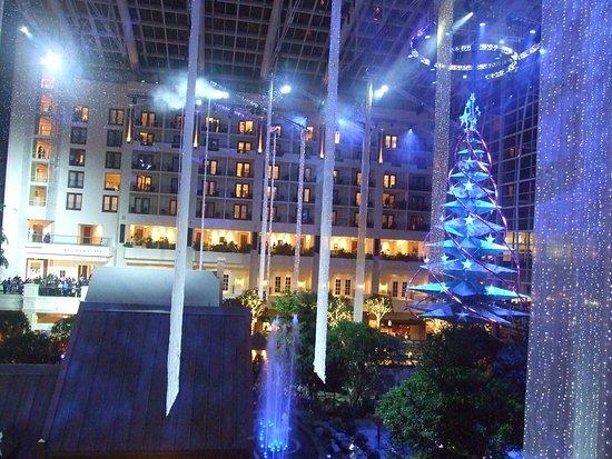 Gaylord National Resort u0026 Convention Center Atrium tree lighting/music show & Atrium tree lighting/music show - Picture of Gaylord National Resort ...