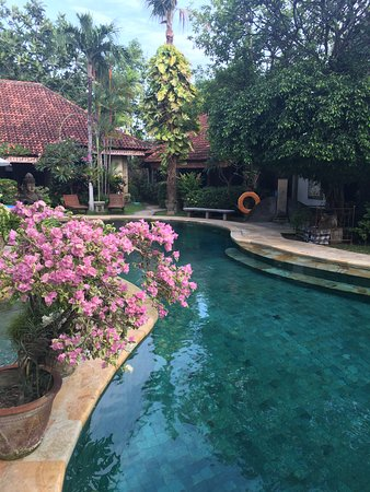 Tamukami Hotel: Beautiful pool & garden