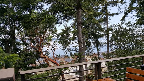 Camano Island, Waszyngton: View from the cafe (you can see the Cama beach cabins below)