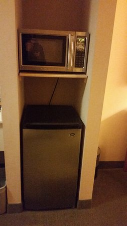 Quality Inn & Suites at Olympic National Park: Nice size frige