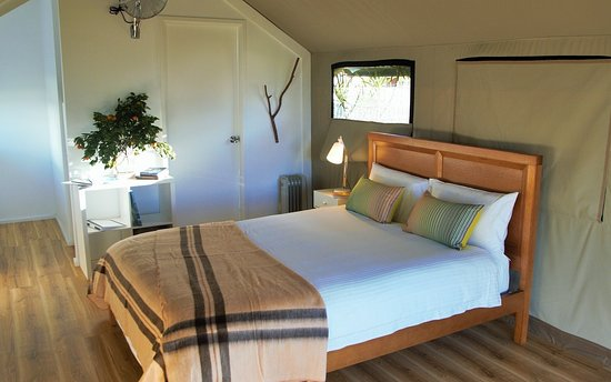 Greenwell Point, Australia: Glamping - Luxury Safari Tent