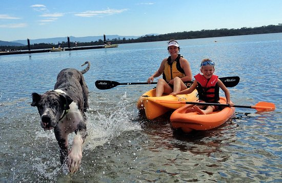 Greenwell Point, Avustralya: Pet Friendly Boats and Kayaks and Accommodation All Year Round