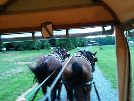 South Boston, VA: Mule ride on the first day.