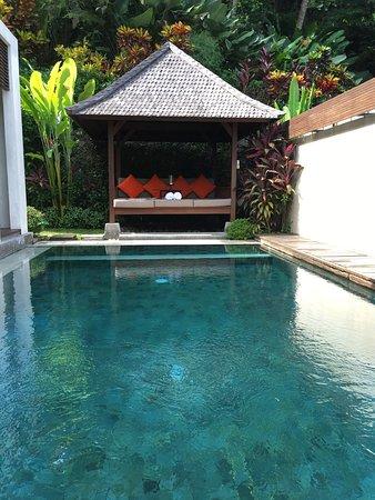 The Samaya Bali Ubud: photo5.jpg