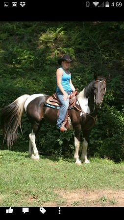Sunset, SC: Come enjoy the mountains on horseback!