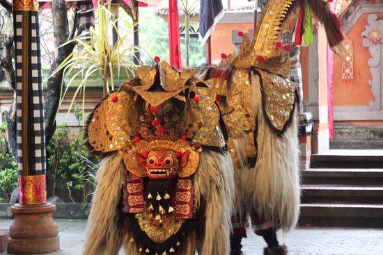 Segare Bali Tour - Private Day Tours