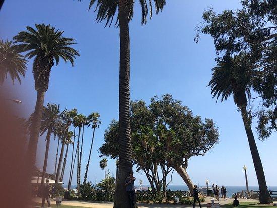 Inn at Venice Beach : photo1.jpg