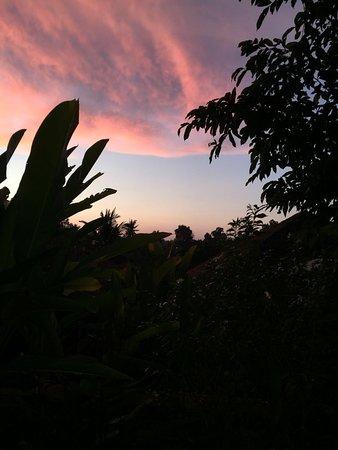 Uma by COMO, Ubud: photo3.jpg