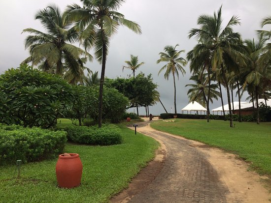 Lush green lawns, swaying palm trees and a roaring sea !!!