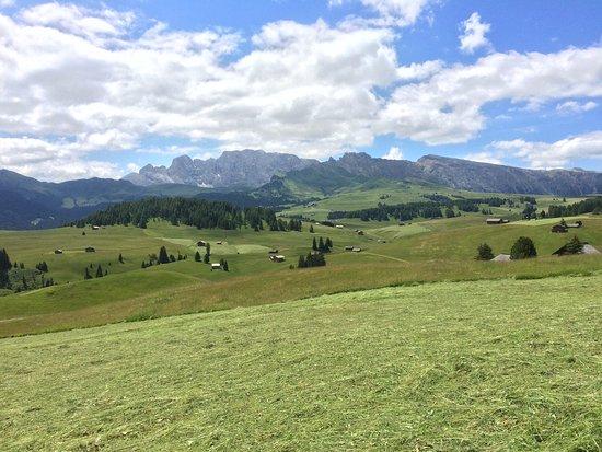 Tyrol du Sud, Italie : Panorama spettacolare sull'altopiano dell'alpe di Siusi