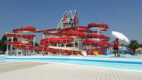Situazione della piscina alle 12 52 praticamente vuota foto di acquatica park milano - Piscina acquatica park ...