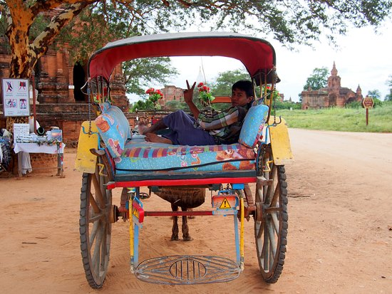 Nyaung U, Birma: The hotel arranged a horse and cart for us one day. It was a great way to get off the beaten tra
