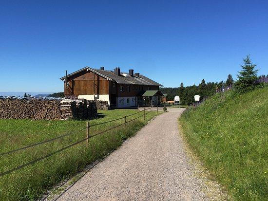 Berggasthof & Pension zur Todtnauer Huette