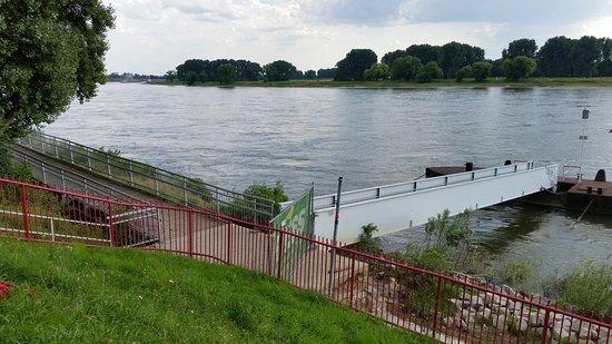 Monheim am Rhein, Almanya: Blick auf den Rhein